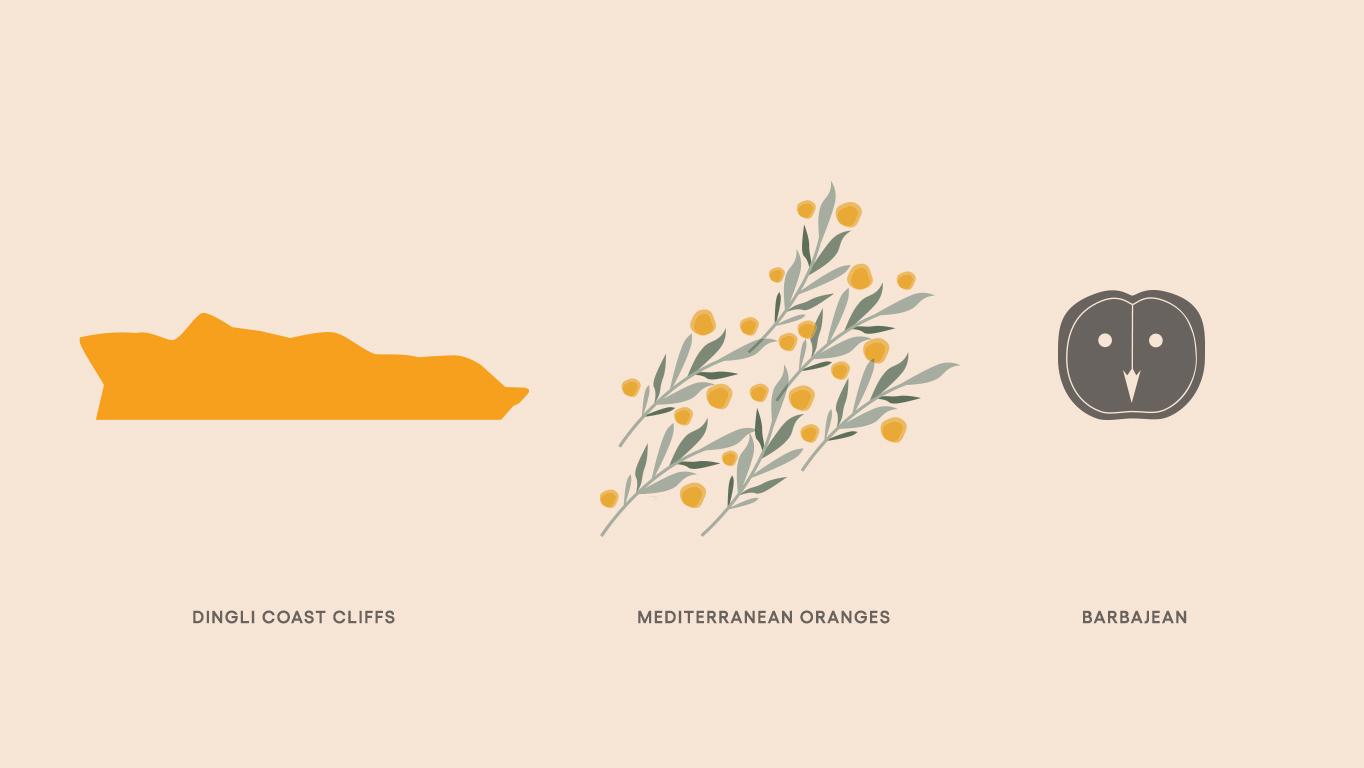 barbajean custom brand illustration