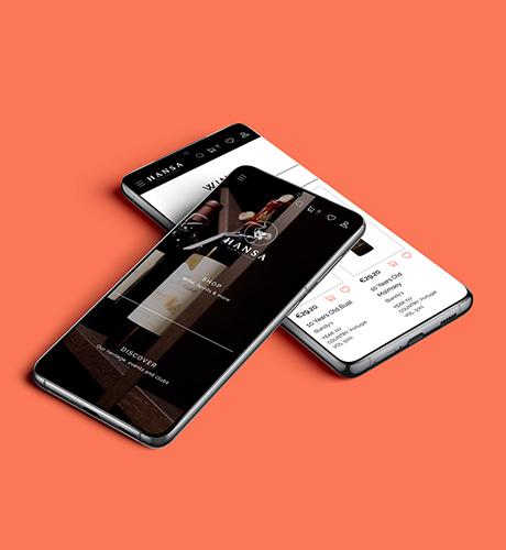 hansa web design and development